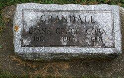 Diana <I>Lyon</I> Crandall