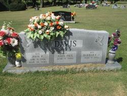 John Pink Davis, Jr