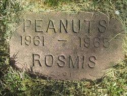 Peanuts Rosmis