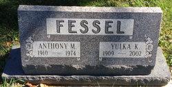 Anthony M Fessel