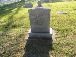 Henry Tapscott