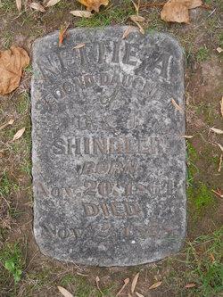 Nettie A. Shindler