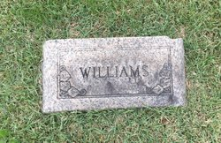 Sarah E Williams