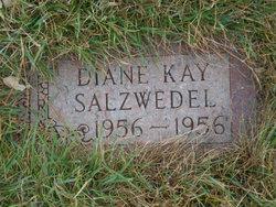 Diane Kay Salzwedel