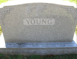Harry B Young