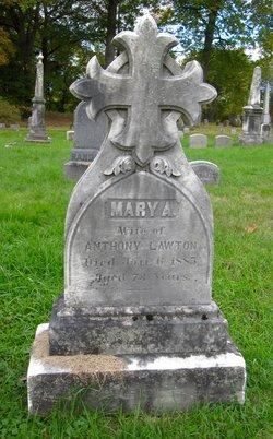 Mary Ann WILKINSON