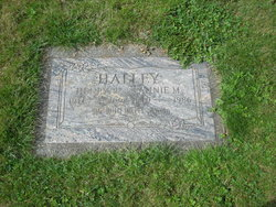 Henry L. Halley