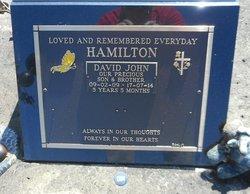 David John Hamilton