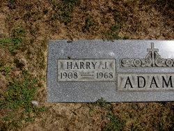 Harry J Adams