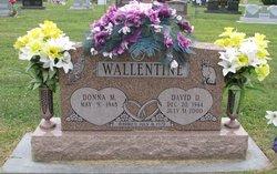 David D Wallentine