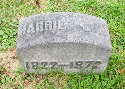 Harriet Son