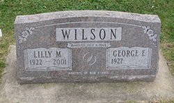Lilly M Wilson