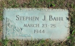 Stephen J Bahr