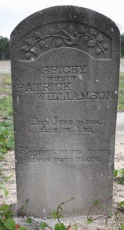 Spicey <I>Flowers</I> Williamson