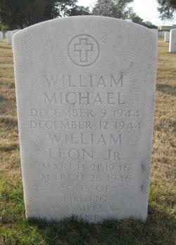 William Michael Sipes