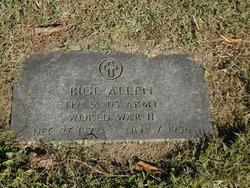 Bige Allen