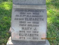 Mary J Fogarty