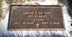 David F Le Voy
