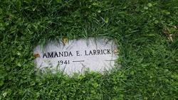 Amanda E Larrick