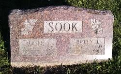 Roger L Sook