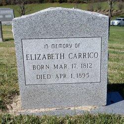 Elizabeth Jane <I>Shuler</I> Carrico