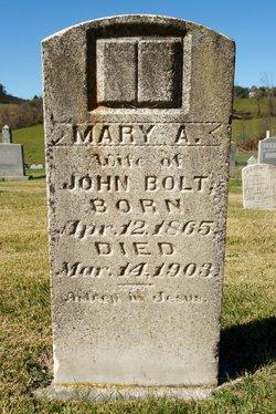 Mary Ann <I>Harrington</I> Bolt