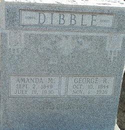Amanda Melvina <I>Arnold</I> Dibble