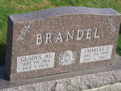 Charles Troy Brandel