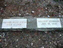 Waldrip Johnson