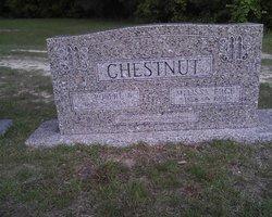 Havallah Melissa <I>Edge</I> Chestnut