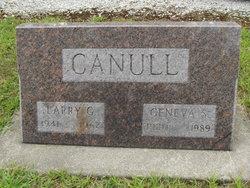 Larry G Canull