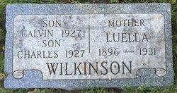 Luella <I>Haldeman</I> Wilkinson