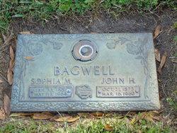 Sophia M Bagwell