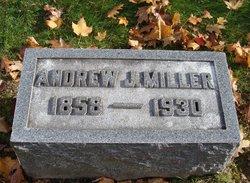 Andrew J Miller