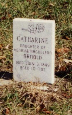 Catharine Arnold