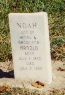 Noah Arnold