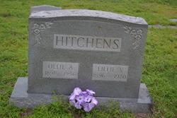 Ollie Atmoor Hitchens