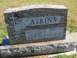Anna Josephine <I>Phillips</I> Atkins Loveless
