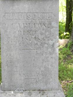 Madison H Carlton