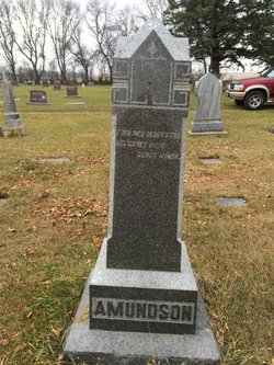 Anna K Amundson