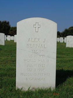 Alex J Bernal