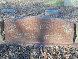 Sallie M. Sullivan