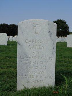 Carlos F Garza