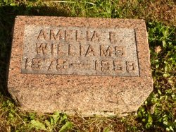 Amelia Elvira <I>Connelly</I> Williams