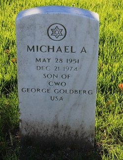 Michael A Goldberg