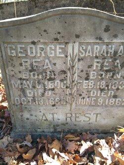 George Rea