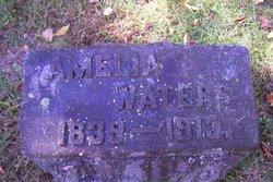 Amelia V. Waters