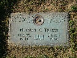 Nelson Treese