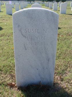 Susie N Cunningham