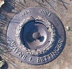 Wayne bettinger mineria de bitcoins